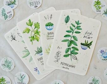 Herb Card Set (4 Cards)