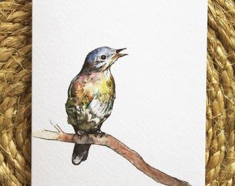 Watercolour Bluebird Print Greetings Card