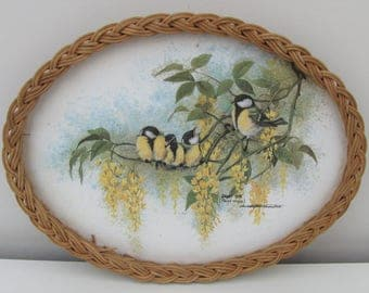 Vintage Garden Birds Melamime and Wicker Tray Made by Imperial Retro Kitsch Great Tits Wisteria Flowers Serving Dining Tea Party Display Fab