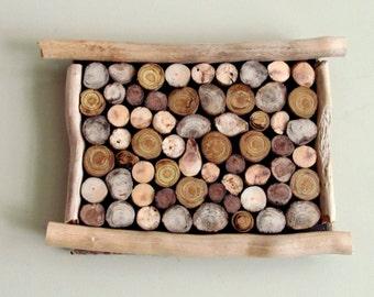 10 x 8 - Driftwood Slice Hanging Art, Wall Hanging Driftwood Art, Driftwood Hanging Art, Driftwood Beach Decor, Driftwood Decor, Wall Art