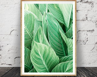 Leaf Wall Art Print, Tropical Plant Photo, Printable Large Poster, Digital Download, Green Leaves Photography, Contemporary Modern Decor