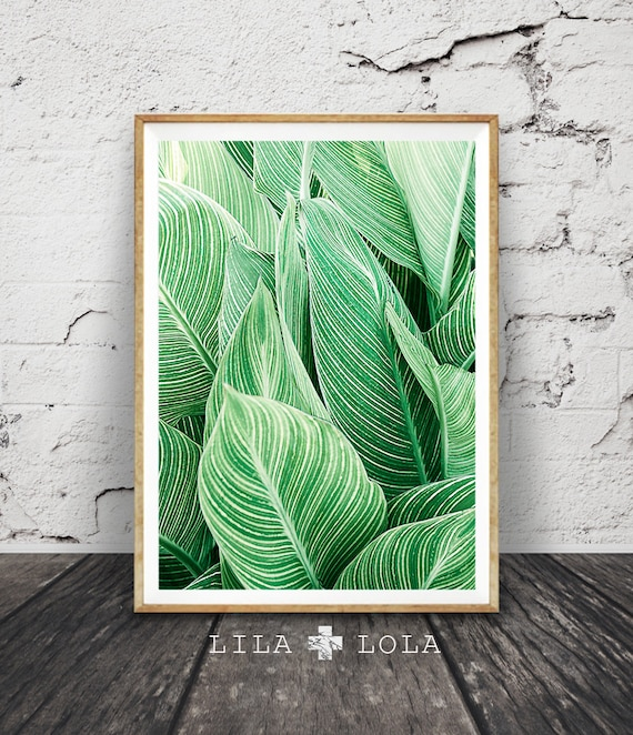 Leaf wall art print tropical plant photo printable large for Leaf wall decor
