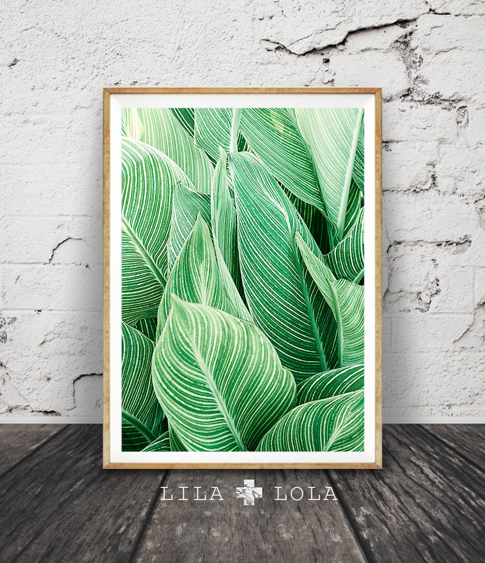Leaf wall art print tropical plant photo printable large - Wall decor photography ...