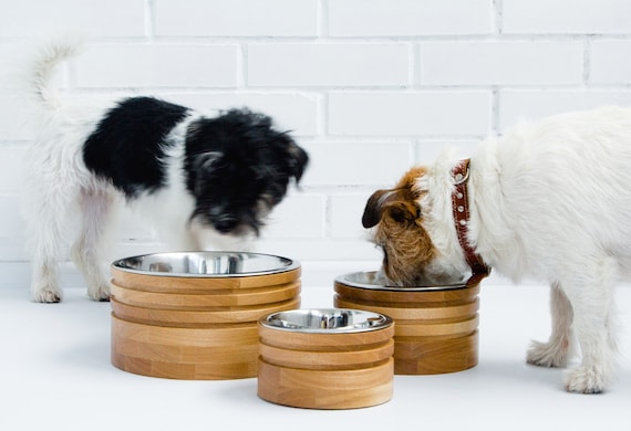 Pet bowls made of ash wood