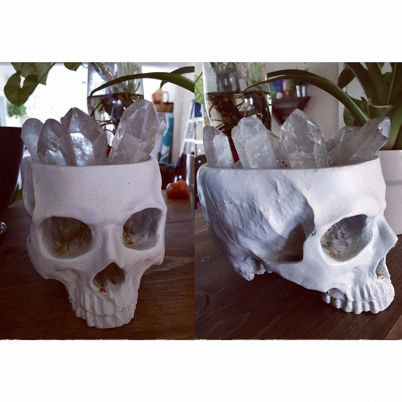 Skull skull decor succulent plater home decor boho decor for Skull home decor