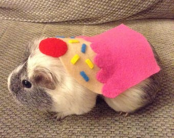 Guinea pig costume. Cupcake small pet costume. Handmade cute unique