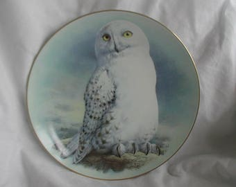 The Snowy Owl Limited First Edition Limoges France Raymond Watson Collectible Plate