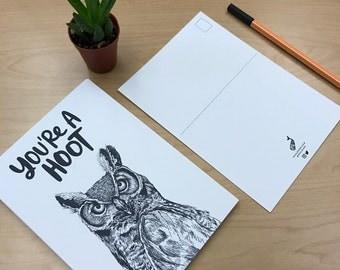 You're A Hoot   Postcard