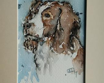 Springer spaniel art painting original dog pet portrait one off watercolour painting of a springer spaniel