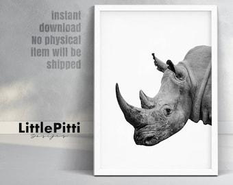 Rhino print, rhino poster, rhinoceros print, safari print, digital print, jungle print, african animal print, rhino photo wall art, download