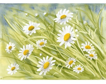 Watercolour print - Daisies by Judit Szabo