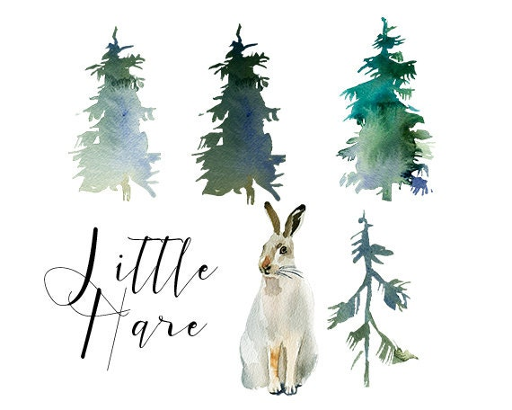Hare Rabbit Watercolor Clipart Fur Trees PNG Christmas ...