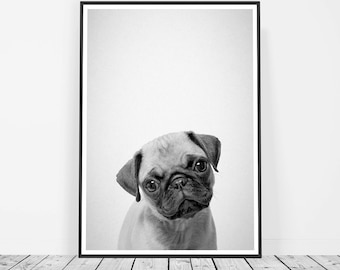 Puppy Print, Dog Print, Dog Lover Gift, Baby Animal Prints, Pug Gift, Pug Lover, Pug Art, Pug Wall Art Print, Dog Nursery, Puppy Dog Print