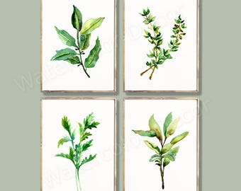 Herb Watercolor Art Prints - Set of 4 Botanical Prints- Botanical Art #A - Bay leaves, Parsley,  Thyme, Sage Watercolor Prints Kitchen Decor