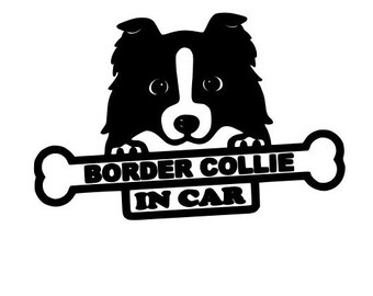 Border Collie in car Decal