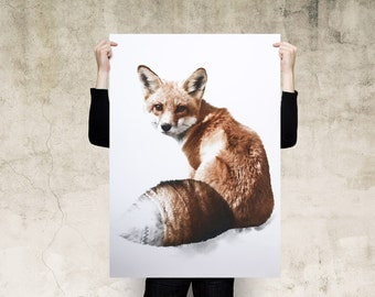 Red Fox Art Print Poster