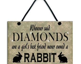 Whoever Said Diamonds Are A Girl's Best Friend Never Owned A Rabbit 553
