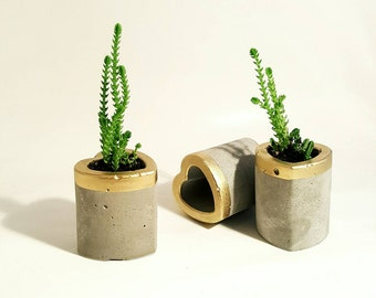 Concrete Planters set of 2