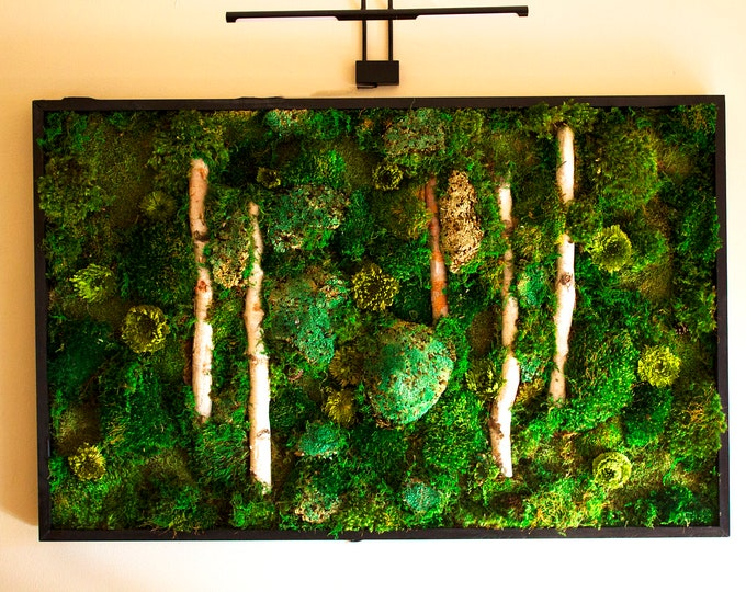 "Moss Wall Art ~ Moss Art Work ~ REAL Preserved Moss ~ No Maintenance Required Moss ""Living"" Wall ~ Vertical Garden ~ 50x32"" ~ ""Lightness"""