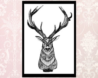 Stag illustration wall art print woodland deer antlers countryside black and white ink poster chic