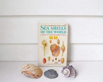 Golden Nature Book Vintage Sea Shell Book