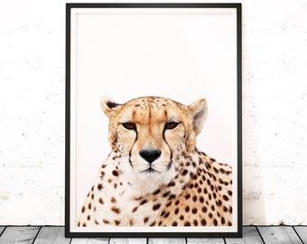 Cheetah Wall Art Print, Cheetah Printable, Animal Home Decor, Instant Download, Jungle Animal, Animal Photography