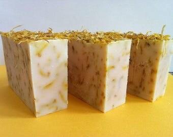Homemade Aloe Calendula Soap
