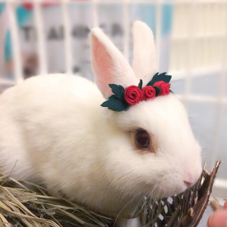 Pet Rabbit Rose Crown Pet Rabbit Flower Accessory Pet Rabbit