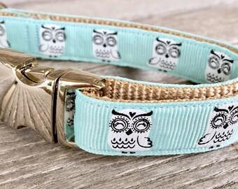 "White Owl 5/8"" Dog Collar, Pretty Blue Dog Collar, Small to Medium Breed Dog Collar"