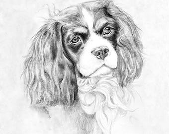 King Charles terrier Pencil drawing pet Custom dog Portrait pencil drawing artwork wall art home decor