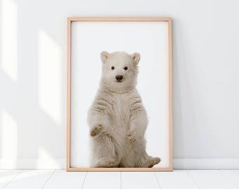 Baby Bear, Bear Cub, Polar Bear Cub, Ursus Maritimus, Bear, Polar Bear, Nursery, Nursery Decor, Nursery Room, Instant Download Poster