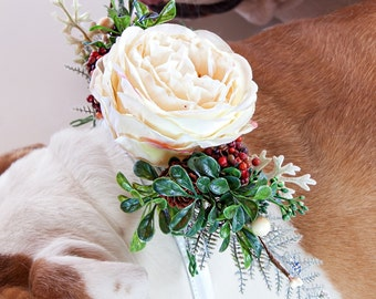NOEL- Wedding Dog Collar, Dog Flower Crown, Floral Dog Collar, Winter Wedding, Boho Wedding, Bohemian Wedding, Dog Flower Girl, Pet Wreath