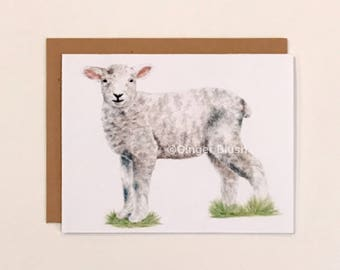 Baby Lamb Greeting Card