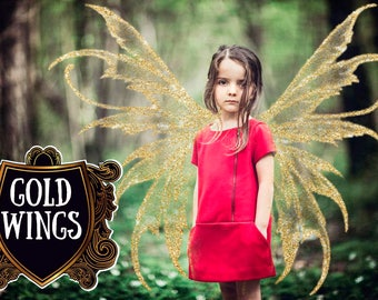 Gold Wings Overlay Transparent Wings Overlays PNG Digital Photoshop Fairy Pixie