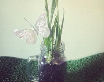 Secret Garden Jam Jar Mug