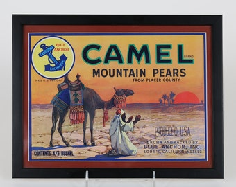 Camel Brand Mountain Pears Fruit Crate Label by V. Watson – Framed