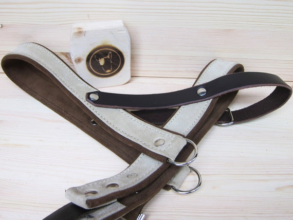 Leather Dog Harness, Beige Suede Leather Harness, Adjustable and Comfort Dog Harness for Small and Large Dogs, Handmade Custom Dog Harness