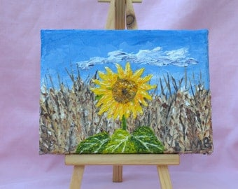 Sunflower in cornfield 3