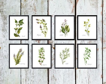 Herb Printable Set of 40 / Rustic Kitchen Decor / Watercolor Botanical Herb Prints / Instant Download Herb Print Set of 40