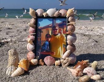 Beachy Shell Frame