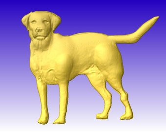 Labrador Retriever 3D Vector Relief Model for cnc projects or sign carving patterns in stl file format