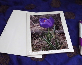 Crocus blank card