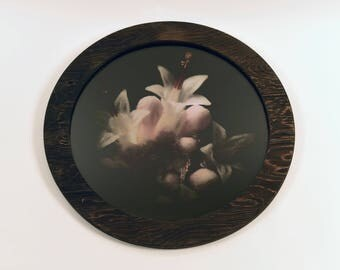 Winter blossom (20')