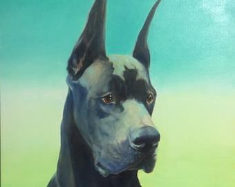 Bane - oil painting great dane portrait