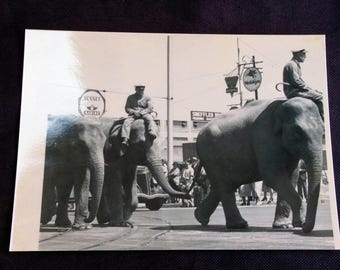 Cole Brothers Circus 1936 on Parade - 5x7 + More Info see description