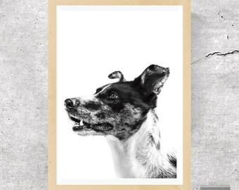 Dog Print, Dog Poster, Animal Print, Nursery Print, Puppy Print, Dog Art, Wall Art, Poster, Prints, Dog Photography, Puppy Art