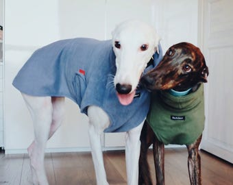 Custom Italian greyhound, Whippet, greyhound coat