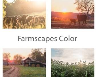 Farmscapes Color Framable Note Cards