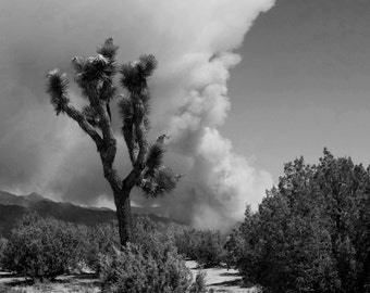 Wildfire in Southern California - Landscape Photography - Instant Download