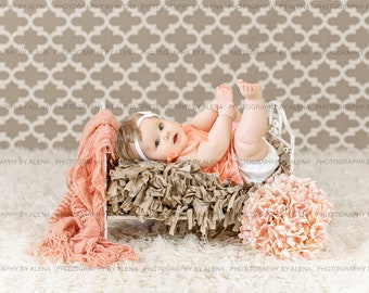 Newborn toddler child Digital Photography Prop Metal Bed
